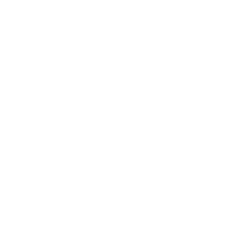 Cristian Bocan